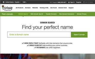 Don't register domain names for more than one year